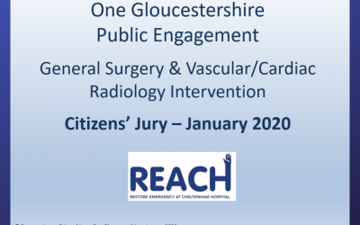 Final stage – Citizens' Jury: Ensuring REACH's FULL presentation is available to view