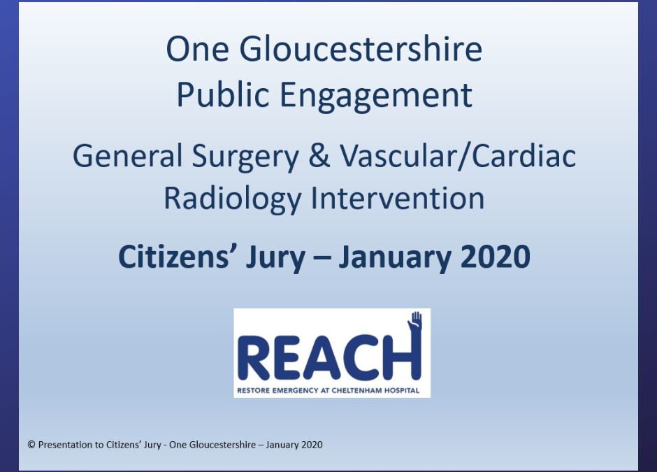 REACH and the Fit for the Future Citizens' Jury