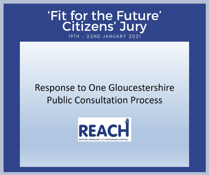 "REACH insight into the ""Fit for the Future"" Citizens' Jury"